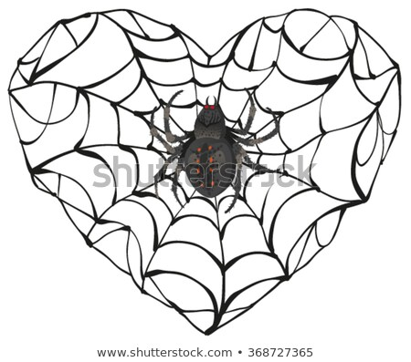 Spider wove web of heart shape. Heart symbol of love. Gothic love heart Stock photo © orensila