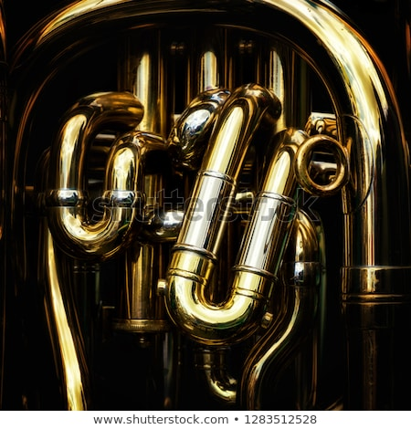 Musician with polished tuba Stock photo © Hofmeester
