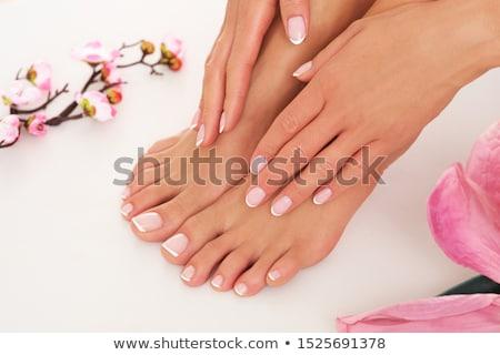 handen · Blauw · professionele · frans · nagels - stockfoto © svetography