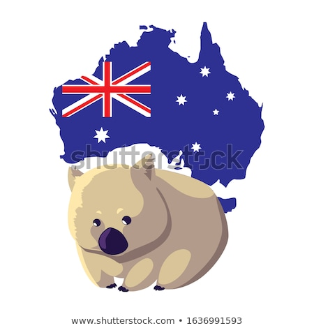 Wombat and Australia map Stock photo © bluering
