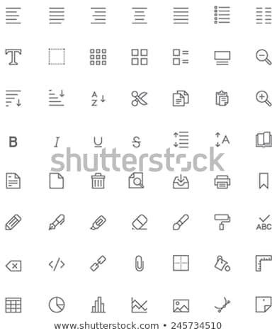 Icon search with highlight Stock photo © Oakozhan