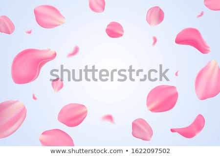 Frame of pink tulips. EPS 10 Stock photo © beholdereye