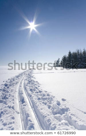 snow path ski track surface stock photo © stevanovicigor