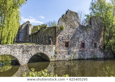 Oude ruïneren klein eiland hemel voorjaar Stockfoto © meinzahn