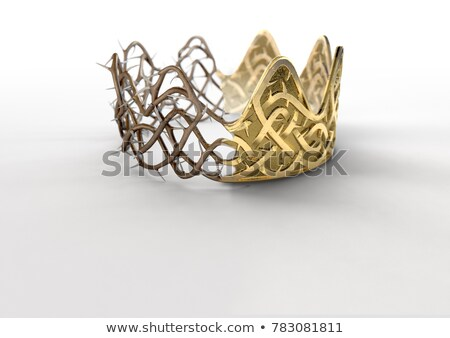 Crown Of Thorns Gold On Black Stock photo © albund