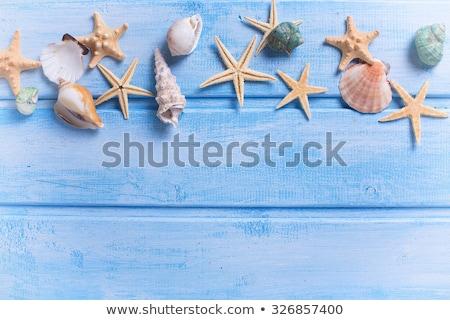 Foto d'archivio: Mare · frame · diverso · marine · blu · legno