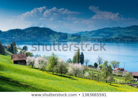 Schwyz town in Alps mountains, Central Switerland Stock photo © Xantana