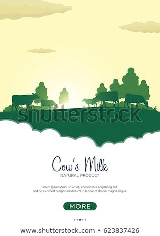 Plakat świeże mleko naturalnych produktu młyn Zdjęcia stock © Leo_Edition
