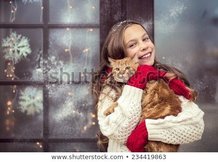 漫画 · クリスマス · ペット · 猫 · 着用 - ストックフォト © ddraw