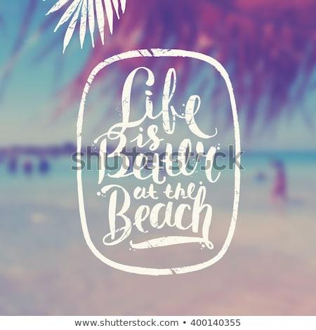 Beach life Stock photo © Hofmeester