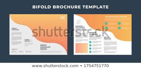blue business bi fold brochure design template in geometric shap Stock photo © SArts