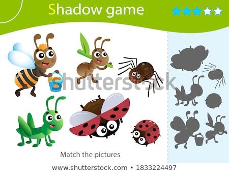 Kever schaduw spel kinderen volwassenen Stockfoto © Olena