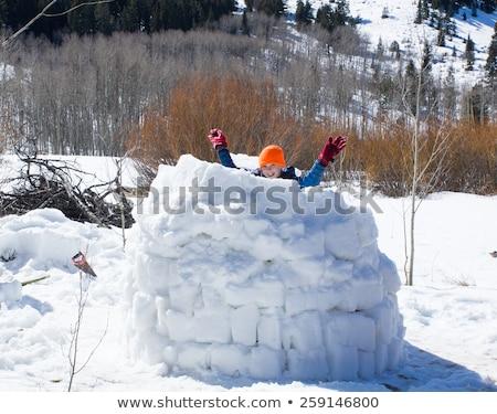 Gyerekek játszik hó kunyhó illusztráció épület Stock fotó © colematt