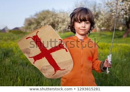 fun knight stock photo © julientromeur