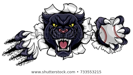 Black Panther Baseball Mascot Breaking Background Stock photo © Krisdog