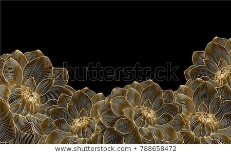 çiçek · kiraz · şeftali · çiçekler · model · kiraz · çiçeği - stok fotoğraf © krisdog