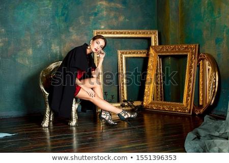 beauty rich brunette woman in luxury interior near empty frames, vintage elegance Stock photo © iordani