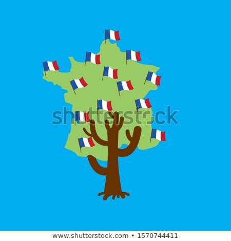 Vatansever ağaç Fransa harita fransız bayrak Stok fotoğraf © popaukropa