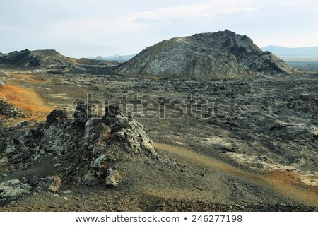 Ruig vulkanisch landschap eiland tenerife natuur Stockfoto © Ashnomad
