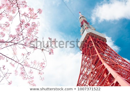 Stock photo: Tokyo tower and buildings, Japan