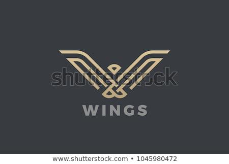 Feniks nowoczesne geometryczny logo luksusowe konsultacji Zdjęcia stock © krustovin