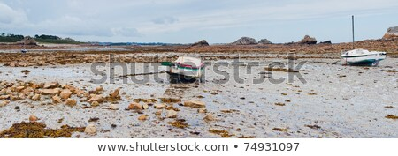 Rowboat at low tide cote Rose Stock photo © macsim