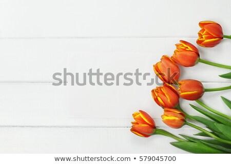 Easter flat lay with orange tulips Stock photo © Melnyk