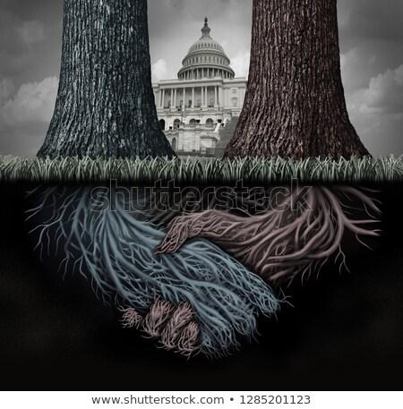 Derin hukuk gizli gizlenmiş siyaset siyasi Stok fotoğraf © Lightsource
