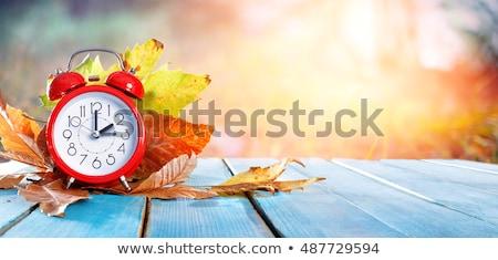 Daglicht spaargeld najaar tijd klok esdoornblad Stockfoto © unikpix