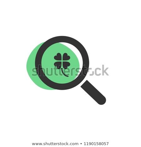 Bakıyor yonca yalıtılmış web simgesi yaprak Stok fotoğraf © Imaagio