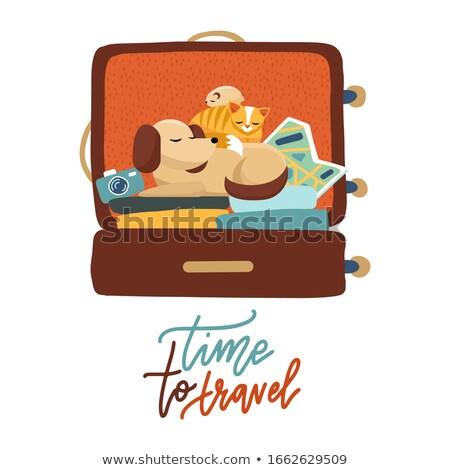 Zaman seyahat bagaj posterler vektör Stok fotoğraf © robuart
