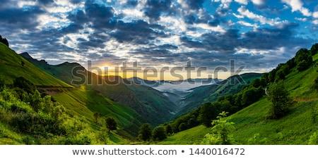 Pyrenees in France Stock photo © pedrosala