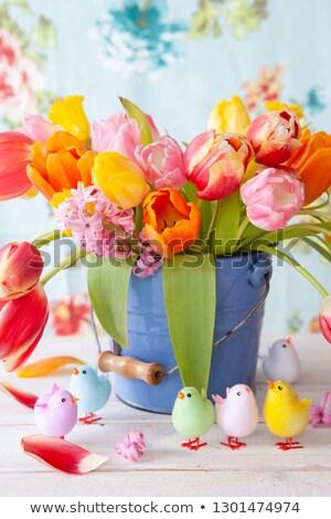 Colorato tulipani piccolo vintage secchio fiori di primavera Foto d'archivio © BarbaraNeveu