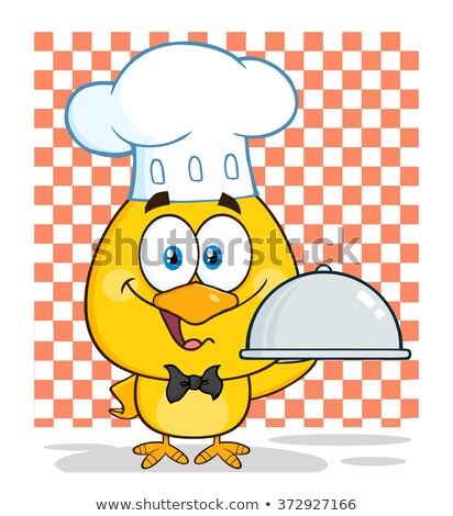 Feliz chef amarelo pintinho Foto stock © hittoon