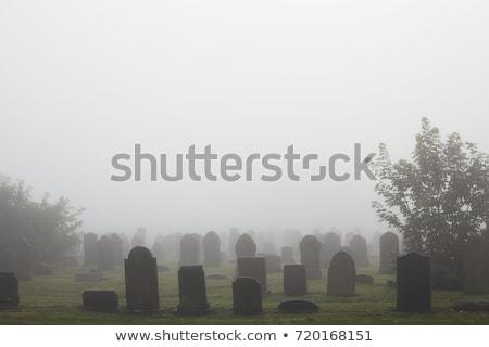 rural · cemitério · plantas · paisagem · cor · grave - foto stock © jeancliclac