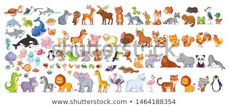 Szett rajzolt állatok illusztráció terv háttér művészet Stock fotó © bluering