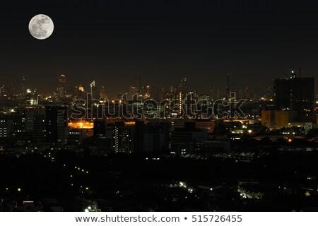 luz · de · la · luna · grande · parque · ilustración · naturaleza · luz - foto stock © bluering