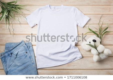 coala · nota · modelo · ilustração · textura · fundo - foto stock © bluering