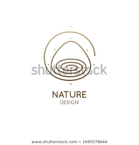 Alternativa eco água carimbo gota de chuva Foto stock © szsz