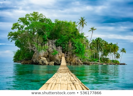 mooie · landschap · tropisch · eiland · groene · bos · achtergrond - stockfoto © konradbak