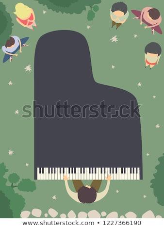 Nacht tuin piano top illustratie Stockfoto © lenm