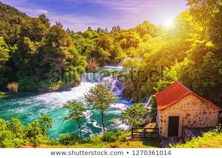 Cachoeira Croácia grande parque água árvore Foto stock © borisb17