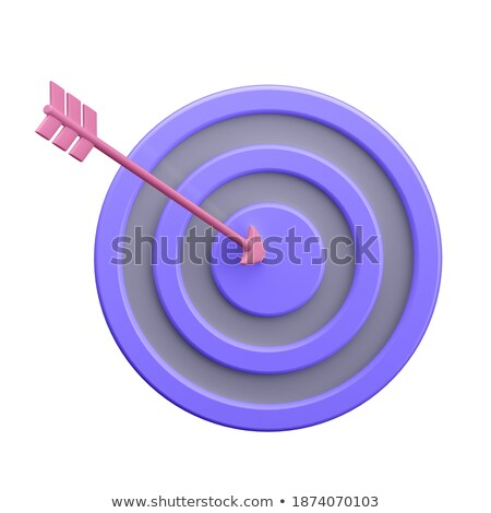 Digital Advertising - Arrows Hit in Red Mark Target. Stock photo © tashatuvango
