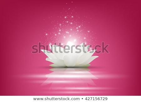 fadas · floral · páscoa · música · papel · primavera - foto stock © carodi