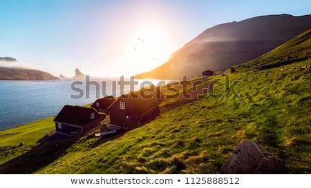 Típico paisagem grama verde montanhas oceano Foto stock © Arrxxx