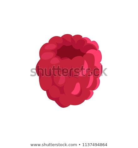 apetitoso · fresco · framboesa · isolado · branco · realista - foto stock © robuart
