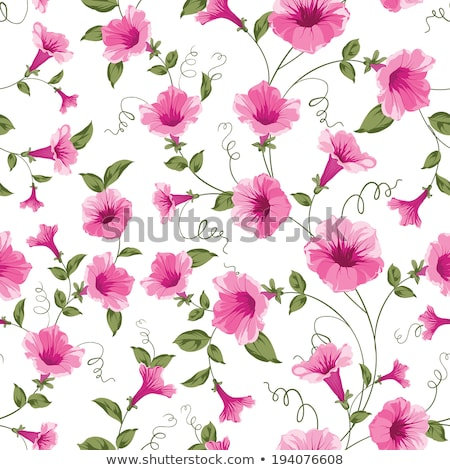 Seamless background design with morning glory flowers Stock photo © colematt