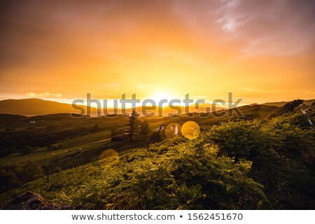 fantastic colored scottish landscape Stock photo © prill