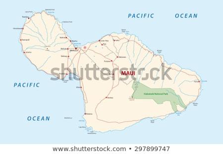 harita · ada · vektör · Hawaii · yalıtılmış · örnek - stok fotoğraf © rbiedermann