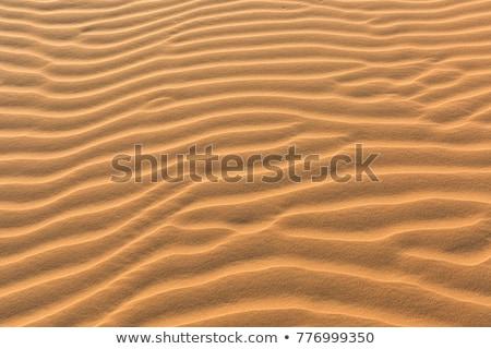 Sabbia deserto panorama arancione blu caldo Foto d'archivio © ozaiachin